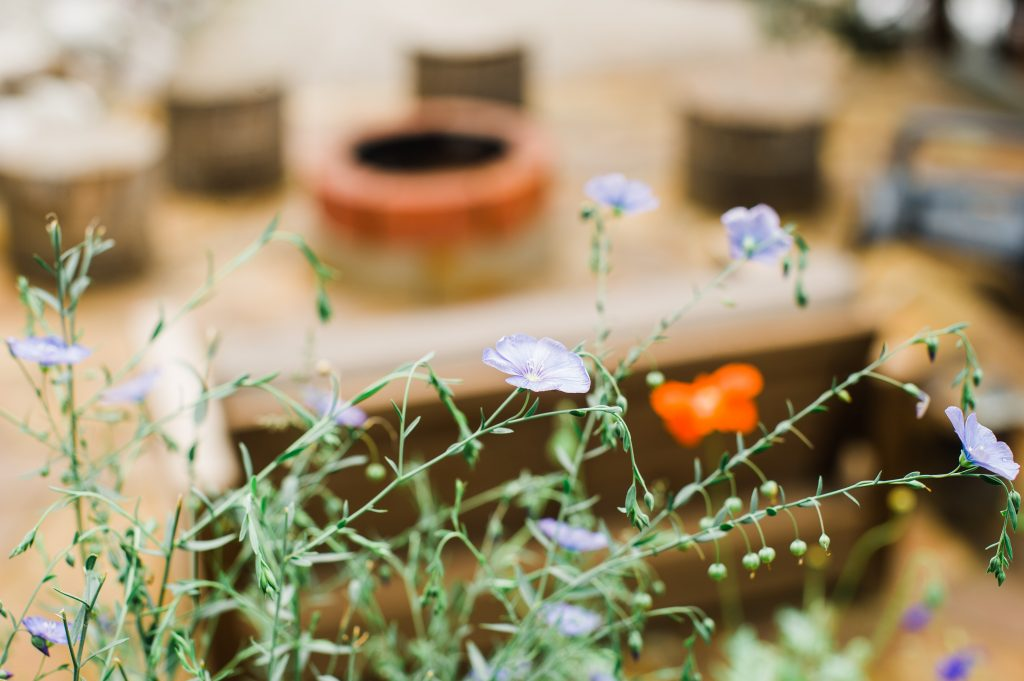 #OLE Outdoor Living Experience surrounded by wildflowers